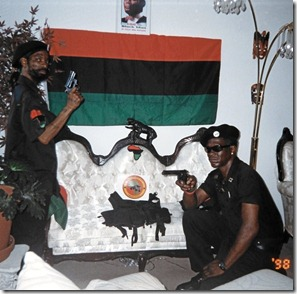 black-panthers-flag-and-guns