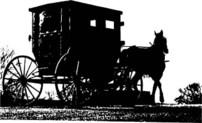 Amish20buggy