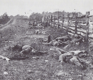 Civil20war20dead20antietam