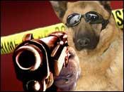 pup_dog